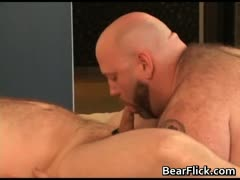 gay-bears-fat-and-horny-for-cock-part4